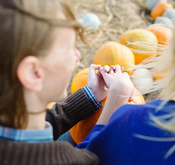 Lyman Orchards, CT Autumn Engagement