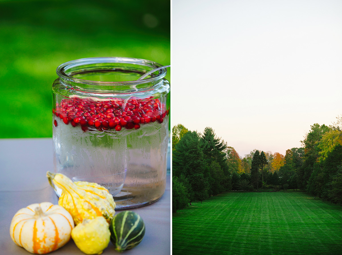 cranberry water and view of field