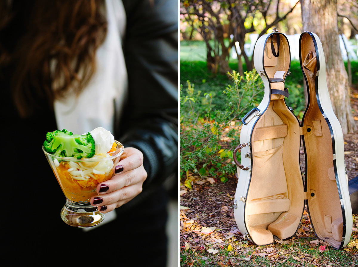 appetizer and cello case