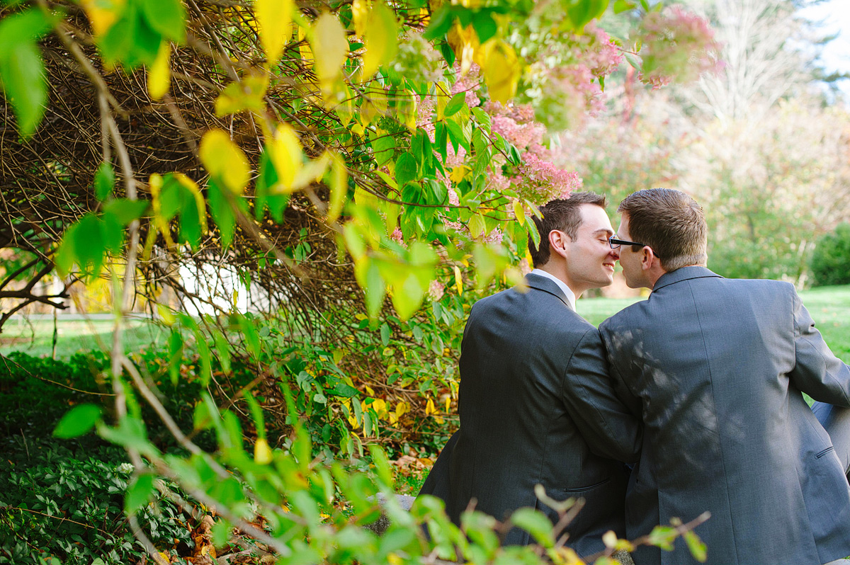 grooms kiss under tree