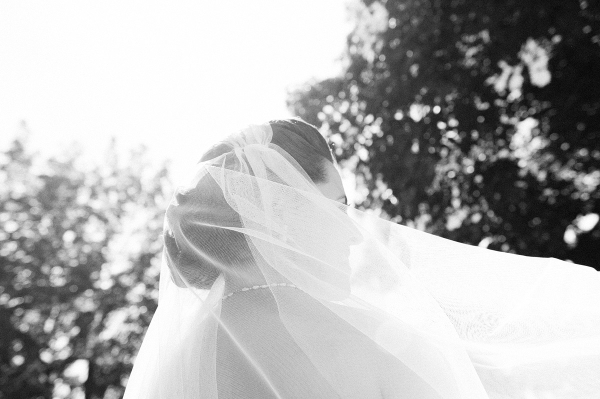 wind blowing bride's veil
